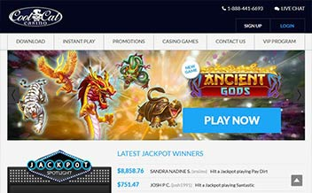 Screenshot 3 Cool Cat Casino