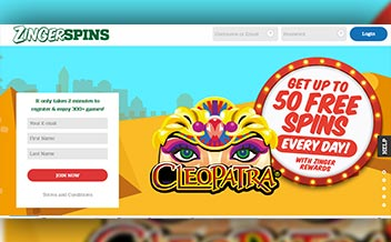 Screenshot 1 Zinger Spins Casino